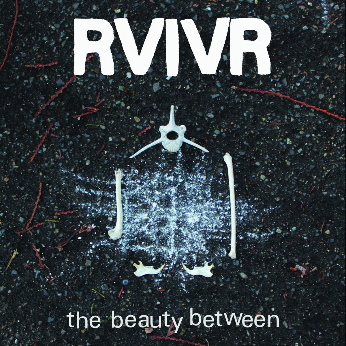 rvivr-the-beauty-between