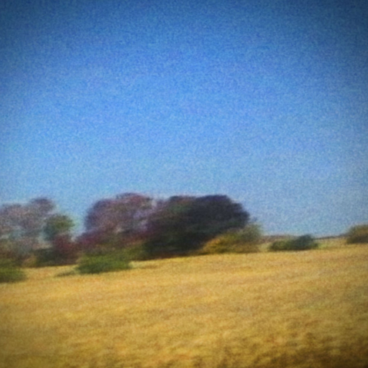 Benji by Sun Kil Moon