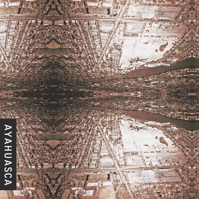 Ayahuasca - Plato's Dark Horse
